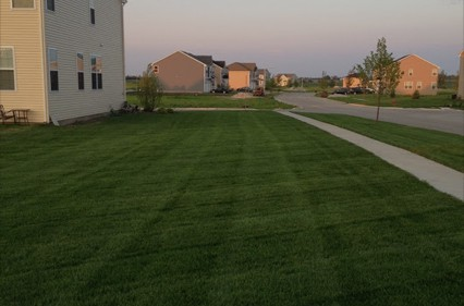 Lawn Care Oswego IL